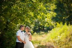Sposa e sposo al giorno delle nozze che camminano all'aperto immagine stock