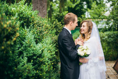 Sposa e sposo all'aperto su un giorno delle nozze Immagine Stock Libera da Diritti