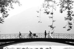 Sposa e sposo che si tengono per mano sul vecchio foregr romantico dell'albero del ponte Immagini Stock Libere da Diritti