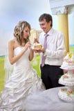 Sposa e sposo che tagliano la torta di cerimonia nuziale Fotografie Stock