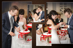 Sposa e sposo che tagliano la torta di cerimonia nuziale Immagine Stock