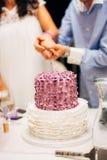 Sposa e sposo che tagliano la torta di cerimonia nuziale Fotografia Stock