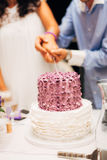 Sposa e sposo che tagliano la torta di cerimonia nuziale Immagini Stock