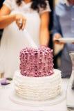 Sposa e sposo che tagliano la torta di cerimonia nuziale Fotografie Stock Libere da Diritti
