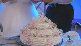 Sposa e sposo che tagliano la torta di cerimonia nuziale Primo piano archivi video