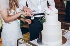 Sposa e sposo che tagliano torta nunziale deliziosa alla ricezione nella r Fotografia Stock Libera da Diritti