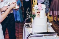 Sposa e sposo che tagliano torta nunziale deliziosa alla ricezione nella r Immagini Stock Libere da Diritti