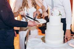 Sposa e sposo che tagliano torta nunziale deliziosa alla ricezione nella r Immagine Stock