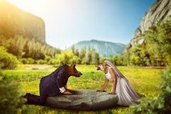 Sposa e sposo con le teste dell'animale selvatico fotografia stock