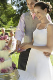 Sposa e sposo Cutting Wedding Cake Fotografia Stock Libera da Diritti