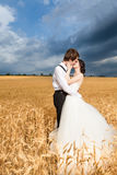 Sposa e sposo di Inlove nel giacimento di grano con il cielo drammatico nella b Immagini Stock Libere da Diritti