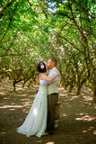 Sposa e sposo First Married Kiss Immagine Stock