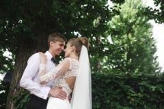 Sposa e sposo nella foresta immagine stock libera da diritti