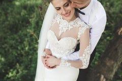 Sposa e sposo nella foresta fotografia stock
