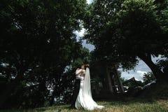 Sposa e sposo nella sosta immagine stock libera da diritti