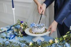 Sposa e sposo a nozze che tagliano il dolce Fotografie Stock Libere da Diritti