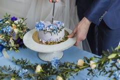 Sposa e sposo a nozze che tagliano il dolce Immagine Stock Libera da Diritti