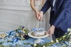 Sposa e sposo a nozze che tagliano il dolce Fotografia Stock