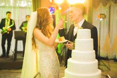 Sposa e sposo a nozze che tagliano la torta nunziale Immagine Stock