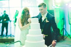 Sposa e sposo a nozze che tagliano la torta nunziale Immagini Stock Libere da Diritti