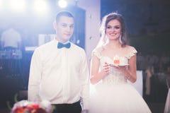 Sposa e sposo a nozze che tagliano la torta nunziale Fotografie Stock