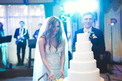 Sposa e sposo a nozze che tagliano la torta nunziale Fotografia Stock Libera da Diritti
