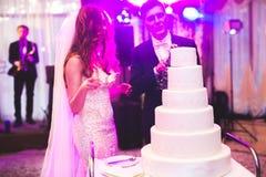 Sposa e sposo a nozze che tagliano la torta nunziale Immagini Stock