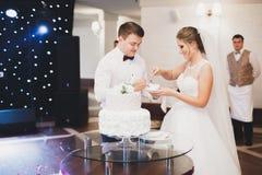 Sposa e sposo a nozze che tagliano la torta nunziale Immagine Stock Libera da Diritti