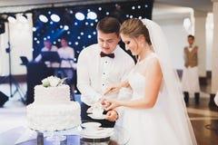 Sposa e sposo a nozze che tagliano la torta nunziale Fotografie Stock Libere da Diritti
