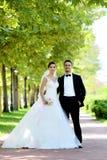 Sposa e sposo in parco naturale immagini stock
