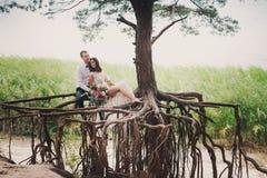 Sposa e sposo sul sorriso della natura Immagini Stock