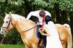sposa e sposo sull'cavalli nella foresta Fotografia Stock