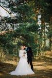 Sposa e sposo in un baciare della sosta le persone appena sposate sposa e sposo delle coppie alle nozze nella foresta di verde de Immagine Stock