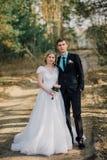 Sposa e sposo in un baciare della sosta le persone appena sposate sposa e sposo delle coppie alle nozze nella foresta di verde de Immagini Stock Libere da Diritti