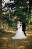 Sposa e sposo in un baciare della sosta le persone appena sposate sposa e sposo delle coppie alle nozze nella foresta di verde de Fotografia Stock Libera da Diritti