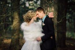 Sposa e sposo in un baciare della sosta le persone appena sposate sposa e sposo delle coppie alle nozze nella foresta di verde de Fotografie Stock Libere da Diritti
