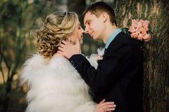 Sposa e sposo in un baciare della sosta le persone appena sposate sposa e sposo delle coppie alle nozze nella foresta di verde de Fotografia Stock