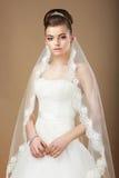 Sposa felice che oPosing nel velo bianco immagini stock libere da diritti