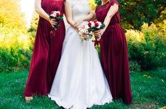 Sposa ispana e damigelle d'onore nella fila Immagine Stock Libera da Diritti