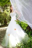 Sposa leggiadramente fotografie stock