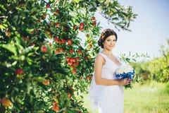 Sposa nel giardino della mela Immagini Stock