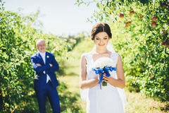Sposa nel giardino della mela Immagini Stock Libere da Diritti