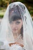 Sposa nella sosta Fotografia Stock