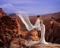 Sposa romantica 5 Fotografie Stock