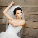 Sposa splendida all'aperto Fotografia Stock