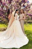Sposa splendida in vestito da sposa lussuoso, posante con le belle damigelle d'onore in vestiti eleganti Fotografia Stock