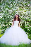 Sposa sui precedenti di di melo di fioritura Fotografia Stock