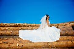 Sposa sul libro macchina Fotografia Stock