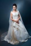 Sposa in vestito da cerimonia nuziale immagine stock libera da diritti