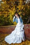 Sposa in vestito da sposa Immagine Stock Libera da Diritti